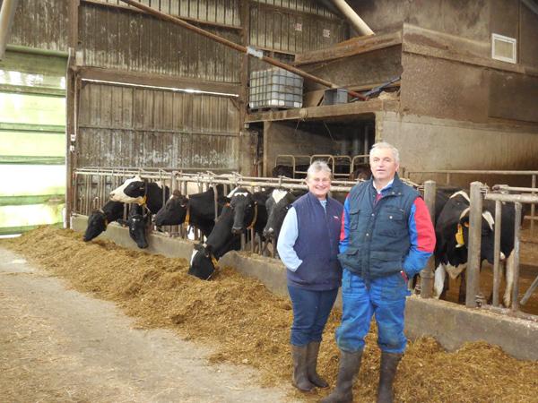 En Direct des Eleveurs - Bretagne - Vaches Le Page